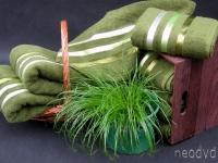 opall-zielony-img_1411